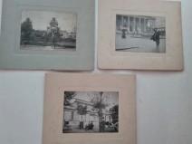 Leilão de Livros e Fotografia