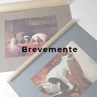 LIVROS E MANUSCRITOS - BREVEMENTE